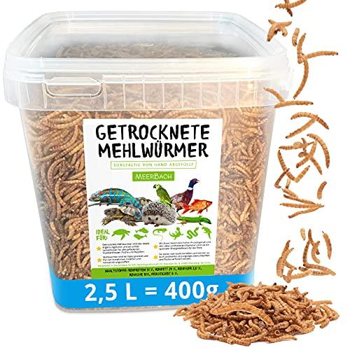 Mehlwürmer getrocknet • 2,5 Liter (400g) Futtermittel im Eimer • der proteinreiche Snack für Wildvögel, Fische, Reptilien, Schildkröten und Igel