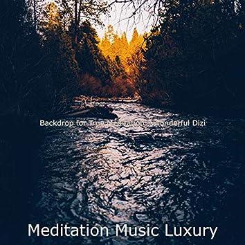 Backdrop for True Meditation - Wonderful Dizi