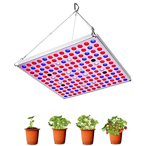 Grow Light 75W Full Spectrum Led Plant Light 3500K Sunlike Plant lamp Bulbs for Indoor Plants Hydroponics Vegetables Flowers from Seedlings to Flowering & Fruiting -Red&Blue