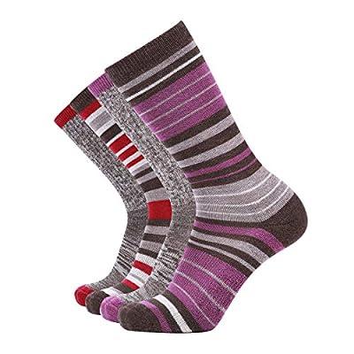 EnerWear 4 Pack Women's Merino Wool Outdoor Hiking Trail Crew Sock (US Shoe Size 4-10, Purple Stripe/Claret/Multi)
