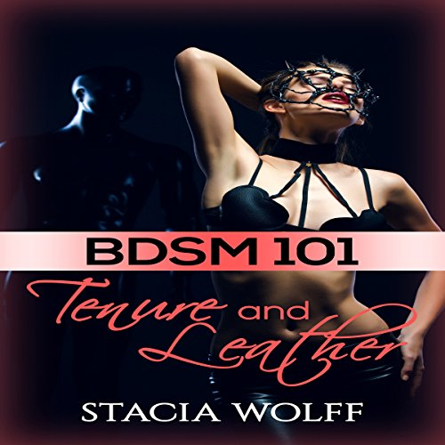 BDSM 101 audiobook cover art