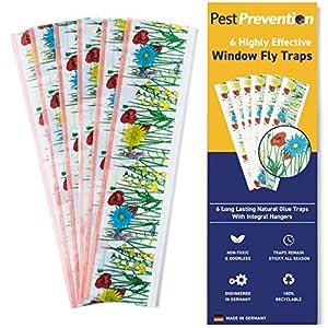 PestPrevention - Juego de 6 trampas para ventanas, atrapamoscas para interiores, tiras de moscas, control de moscas para casa por PestPrevention