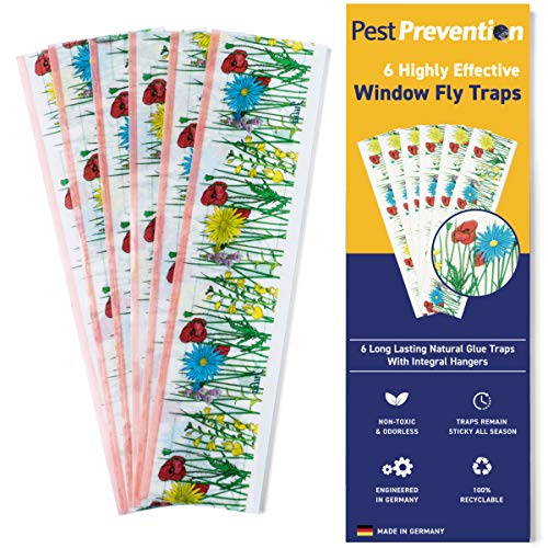 Window Fly Traps | Pack of 6 Traps | Indoor Fly Catcher | Fly Strips | House Fly Control by PestPrevention | Results Guaranteed