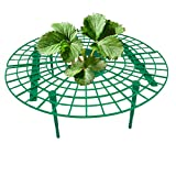 Tree Strawberry Plant Supports Keeping Fruit Clean and Off The Soil Avoid Ground Rot 10 Pcs
