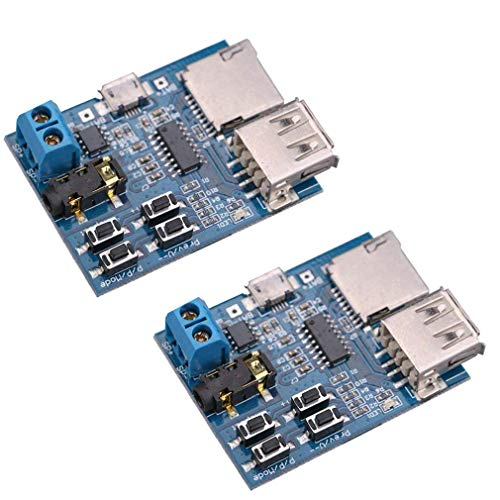 2 x TF Karte U Disk Play MP3 Decoder Player Modul mit Audio Verstärker Audio Decoding Player Modul Micro USB 5V Netzteil