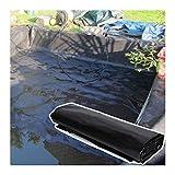 GDMING 50S Teichfolie Für Gartenlandschaftsbecken, Brunnen PVC-Membran Flexibel Schwerlast Teichhaut, Verstärkt Durchstoßfestigkeit, 49 Größen (Color : Black, Size : 6x10m)