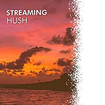 # Streaming Hush
