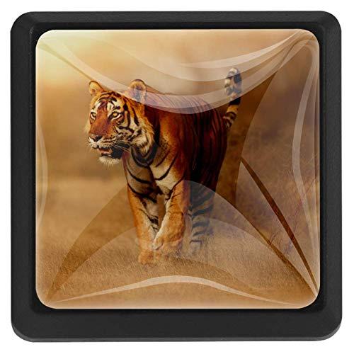 TIZORAX Schubladenknöpfe, Tiertiere, Tiger in Habitat, Küchenschrankgriff, quadratisch, 3 Packungen für Schrankschrank, Kommode, Tür, Heimdekoration