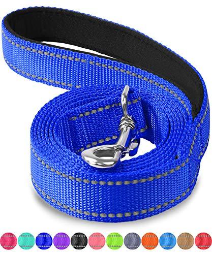 Joytale Hundeleine mit Bequemen Gepolsterten Griff, Reflektierend Hunde Leine für Ausbildung und Wandern, Nylon Hundeleine Für Mittlere und Große Hunde,Navy blau