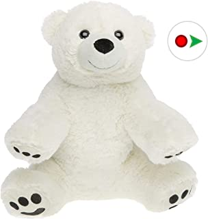 Stuffems Toy Shop Record Your Own Plush 16 inch The Polar Bear - Ready to Love in A Few Easy Steps