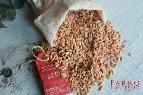 古代小麦(スペルト小麦)ファッロ・セミペラート(FarroSemiperato)500g(ジャコモ・サントレーリ)GiacomoSantoleriイタリア産