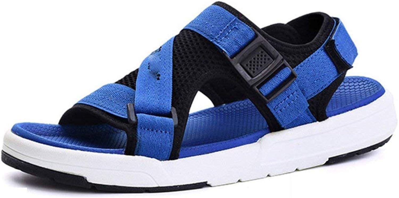 Fuxitoggo Herren Sandalen Casual Hausschuhe Sandalen Modische Komfortable Atmungsaktive (Farbe   Blau, Gre   40EU)