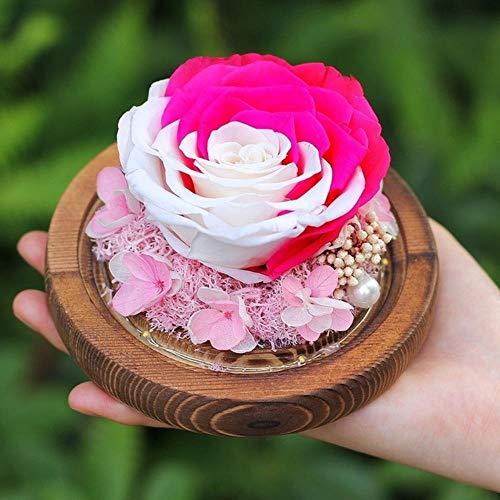 FICI Rose Gedroogde bloem glasdecoratie Bruiloftsdecoratie Onsterfelijke verse roos in glas Verjaardag Valentijnsdag geschenk, 08