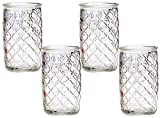 Circleware Garden Gate All Purpose Drinking Glasses, Set of 4, 17 oz, Clear, 170z