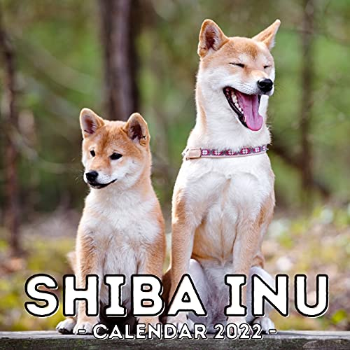 Shiba Inu Calendar 2022: 16-Month Calendar, Cute Gift Idea For Shiba Inu Lovers Men And Women
