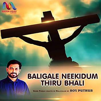 Baligale Neekidum Thiru Bhali - Single