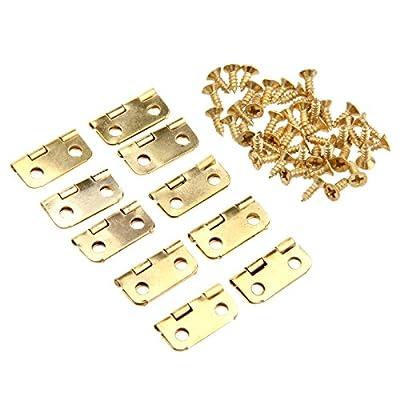 Dophee 16x13mm Mini Metal Hinges Jewellery Box Dolls House Decorative Hinges With Screws