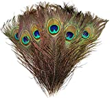 Natural Peacock Feathers 10'-12' 30pcs for Craft Wedding Christmas Décor by Blisstime