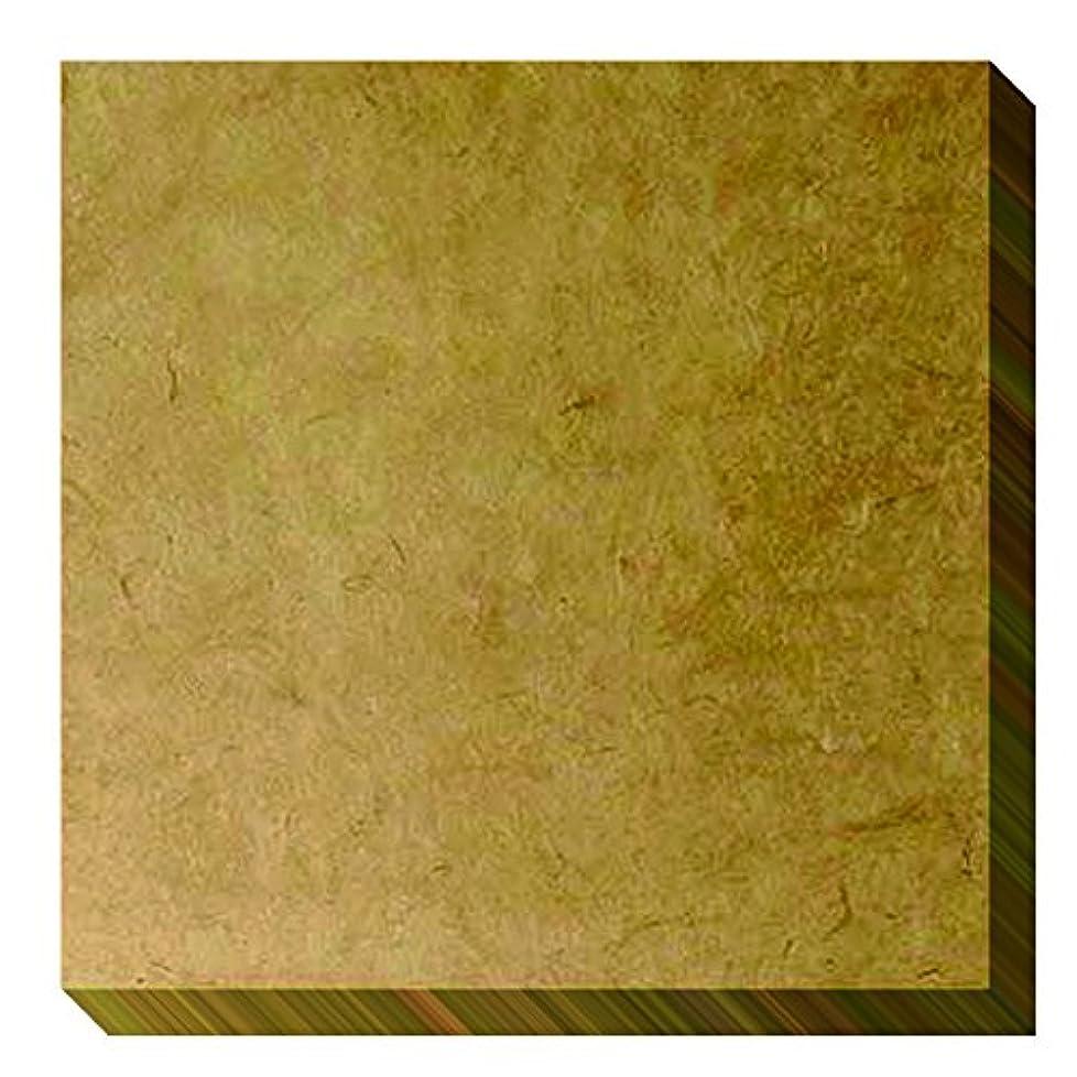 ピグマリオン焼く競争力のあるRaxa(ラシャ) アートパネル アートパレット プレーン ライトブラウン APV-4  ヒマラヤ 手漉き紙 ナチュラル クラフトペーパー 自然素材 ジャケットサイズ 奥行30×高さ30×幅2cm