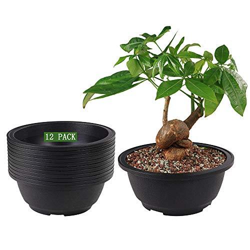 MUZHI 12 Pack Matte Finish Black Round Bonsai Bowl Planter Pot with Drainage, Plastic Garden Low Planter Pots 7.8'