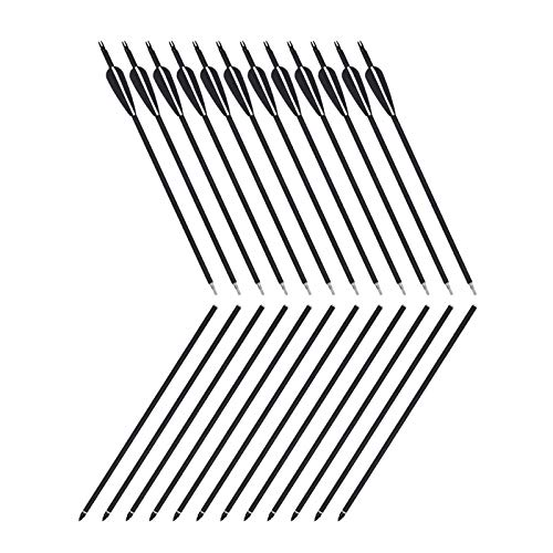 SinoArt 31Inch 2 Piece Arrows Takedown Shaft for Bow Archery Hunting (12 Pack)