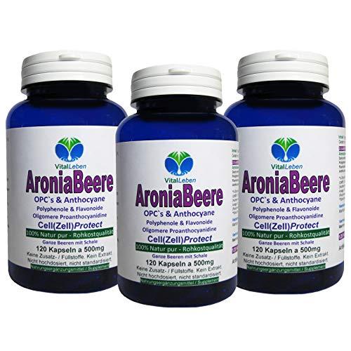ARONIA Beeren OPC Cell(Zell)Protect - 360 (3x120) Pulver Kapseln - Antioxidantien + Immunsystem + Abwehrkräfte - Polyphenole Anthocyane Flavonoide - NATUR PUR ohne ZUSATZSTOFFE - Deutschland. 26845-3