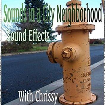 Sounds in a City Neighborhood