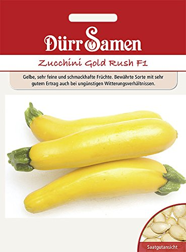 Dürr Samen Zucchini Gold Rush F1, gelbe Früchte