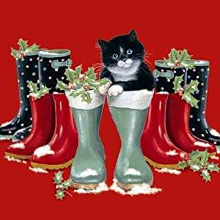 Black White Cat Christmas Cards Chrissie Snelling Puss in