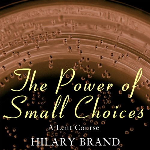 The Power of Small Choices audiobook cover art