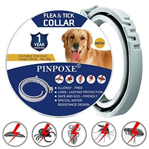 PINPOXE Zeckenhalsband für Hunde, Zecken- & Flohschutzhalsband, Hundehalsbänder gegen Ungeziefer, Floh Zecken Kragen Floh-und Zecken Prävention Halsbänder, Verstellbar Wasserdicht Hund Flohhalsband