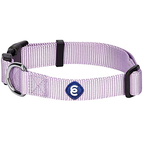 Blueberry Pet Essentials 21 Colors Classic Dog Collar, Lavender, X-Small, Neck 8'-11', Nylon Collars for Dogs