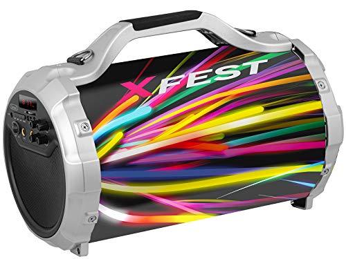 Trevi XFEST XF 300 MAX luidspreker draagbaar met MP3, USB, SD, AUX-IN, Bluetooth, dynamische microfoon met kabel, karaoke party speaker, oplaadbaar