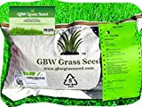 1kg Grass Seed Covers 60 m2 (645 ft2) Overseeding...
