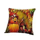 LOKODO Funda de Almohada Decorativa para Halloween, diseño de Calabaza, Fantasmas, decoración del...