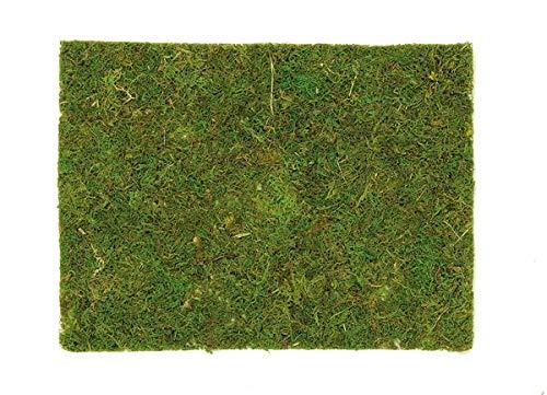 Moosplatte 40x30cm Dekorationen für Haus und Garten