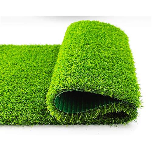 Verschiedene Wichten Grün Strohmatte Teppiche, hochwertige Kunstrasen, Garten Corridors Balkone Dächer Teppiche und Pet Fenster (Color : 20MM, Size : 2x0.5m)