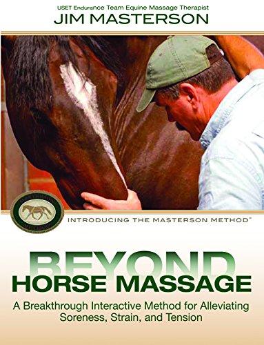 Top 10 Best massage dvd Reviews