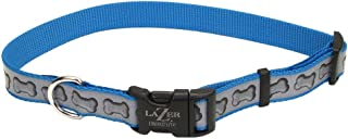 Lazer Brite Reflective Adjustable Dog Collar   Turquoise Bones 5/8