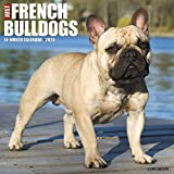 Just French Bulldogs 2020 Wall Calendar (Dog Breed Calendar)