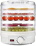 NKTJFUR Alimento deshidratador eléctrico Alimento Redondo Deshidratador 350W Gran 5 bandejas extraíbles Control de Temperatura Ajustable bocadillos Naturales saludables Frutos Secos