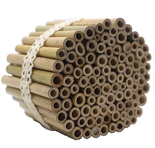 Super Idee 200 Stück 10cm Länge Bambusröhrchen Füllmaterial Insektenhotel Inhalt im Winter Wildbienen Nisthilfe Insektenhaus zum Aufhängen Garten Balkon Insektenhotel Füllung für Wildbienen Insekten