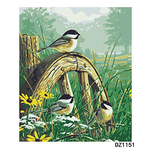 OKOUNOKO Pinturas Artísticas Canción del Pájaro De La Mañana Dibujo para Colorear Moderno Kits De Bricolaje Obra De Arte Casa Decoración Sin Marco 40X50Cm