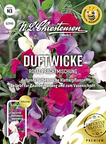 Duftwicke Royal Prachtmischung, duftende farbenreiche Kletterpflanze, bienenfreundlich, Samen