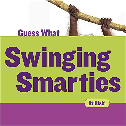 Swinging Smarties: Orangutan (Guess What)