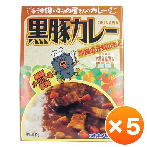 沖縄のお肉屋さんのカレー 黒豚カレー5箱セット