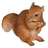 SIDCO Eichhörnchen lebensecht mit Nuß Tierfigur Garten Figur Gartendeko Deko
