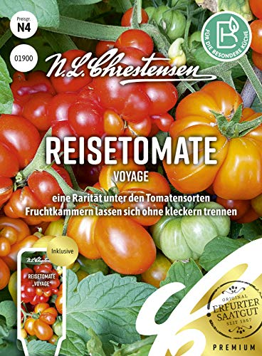 Reisetomate Voyage, eine Rarität unter den Tomatensorten, Samen