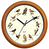 Benail - Reloj de Pared con diseño de canción de pájaros, 30,5 cm
