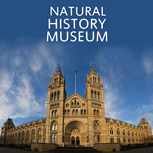 Natural History Museum Buddy